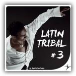 Latin Tribal #3 - 130-135BPM