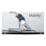 Mobility (MasterClass)